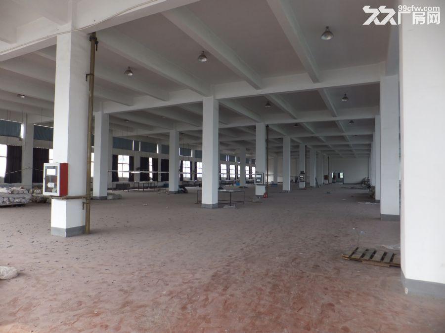 天宁1200平米三楼店商2700平米二楼厂房出租-图(1)