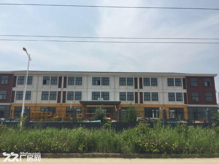 全新标准厂房综合楼仓库出租-图(3)