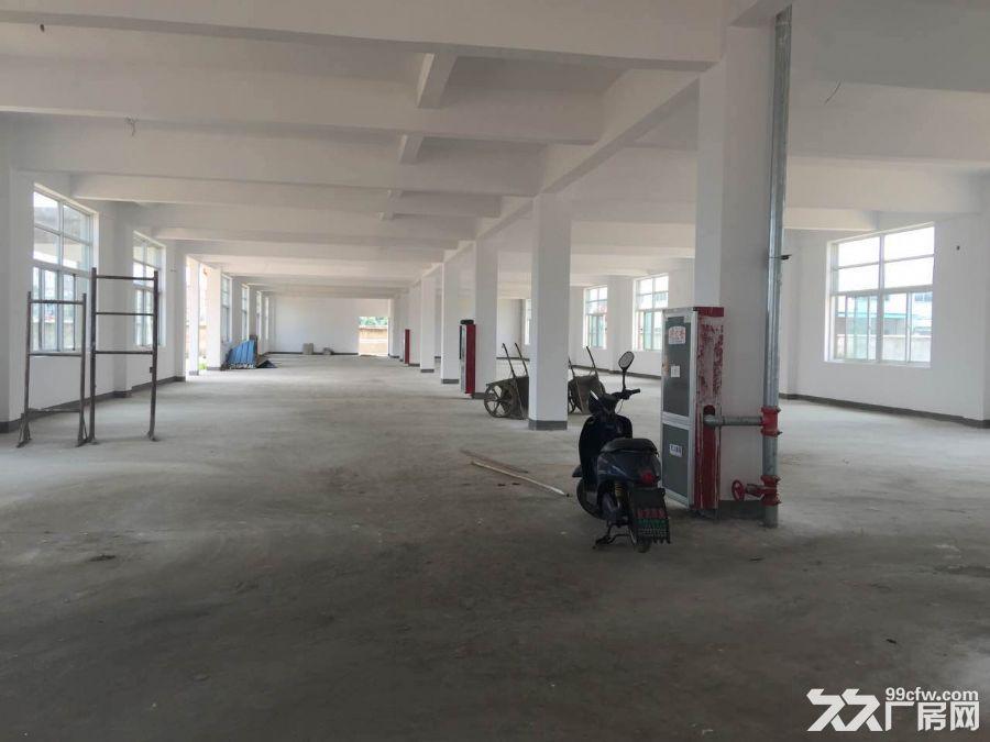 全新标准厂房综合楼仓库出租-图(4)