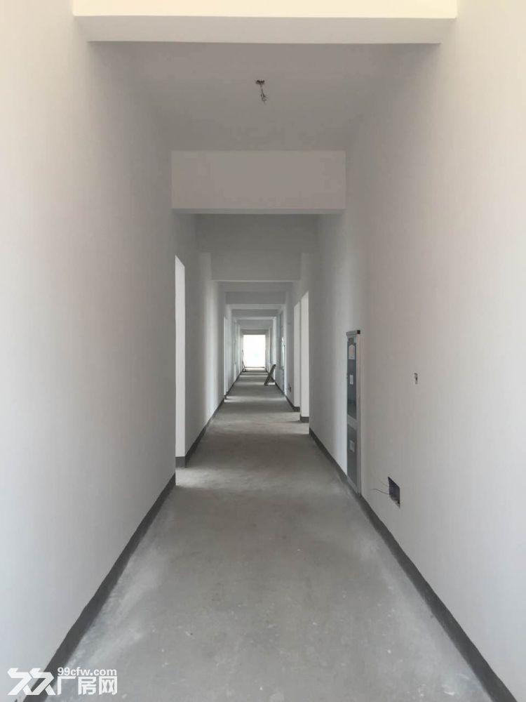 全新标准厂房综合楼仓库出租-图(5)