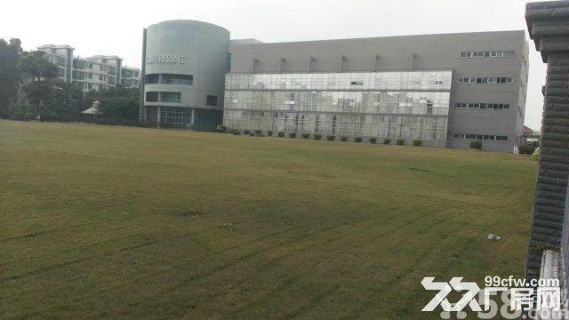 西丽关口单层5200平方共4层厂房出租、带真实照片看图-图(2)