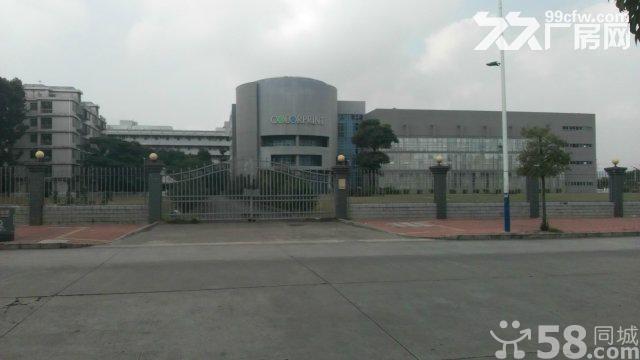 西丽关口单层5200平方共4层厂房出租、带真实照片看图-图(3)