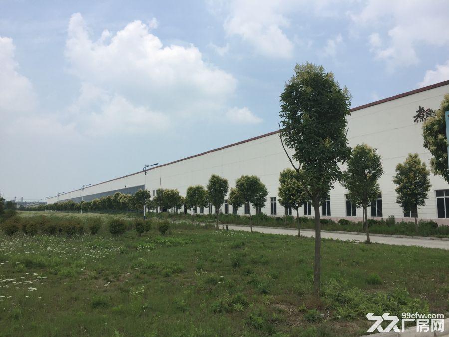 2600平方米厂房出租-图(1)