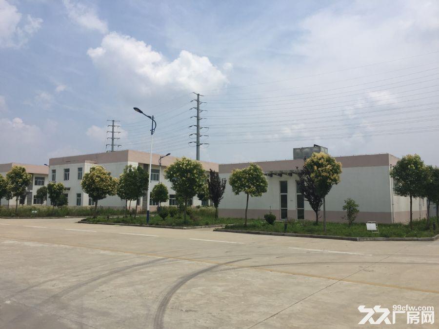 2600平方米厂房出租-图(4)