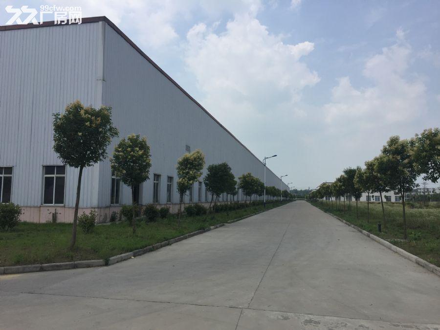 2600平方米厂房出租-图(5)