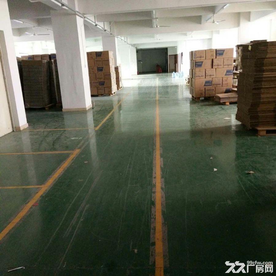 观澜厂房清平高速出口3楼1160平米急租-图(2)