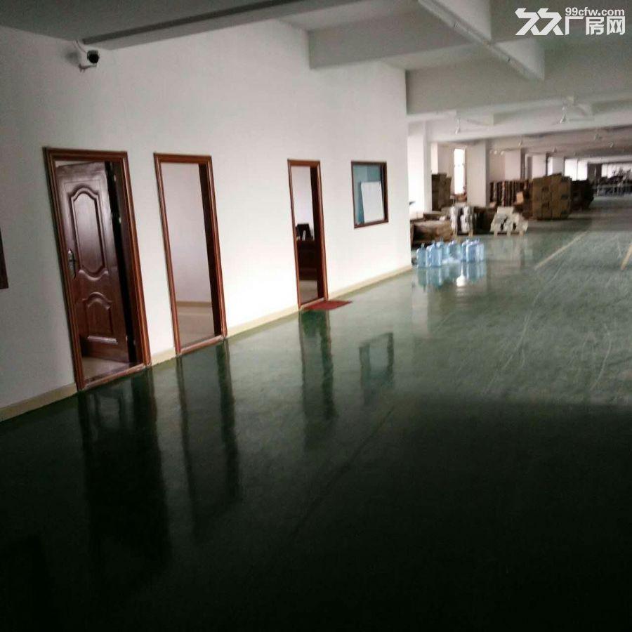 观澜厂房清平高速出口3楼1160平米急租-图(3)