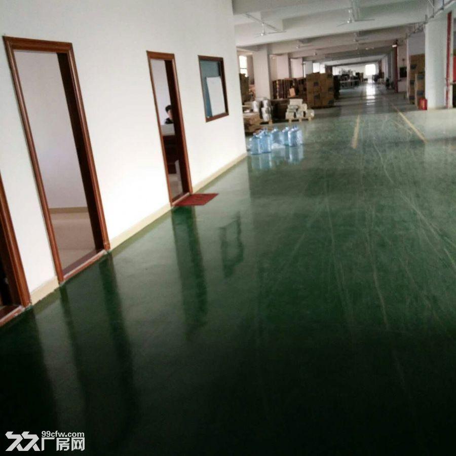 观澜厂房清平高速出口3楼1160平米急租-图(4)