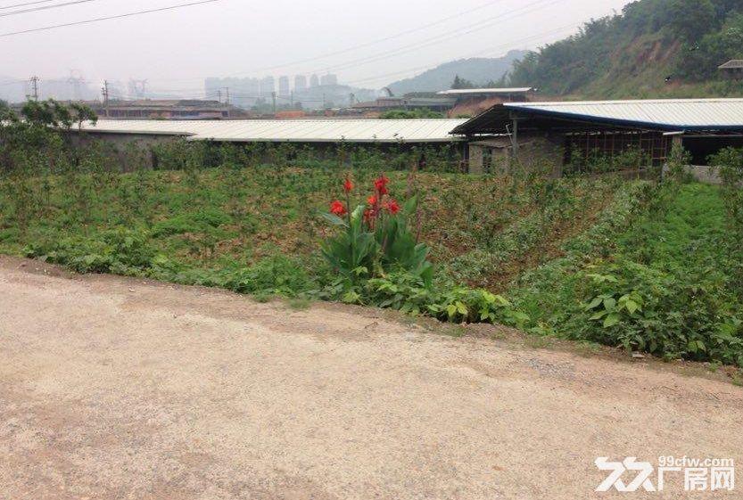 (出售)南屿茂田马路旁两亩地土地15万可盖厂房、别墅-图(3)