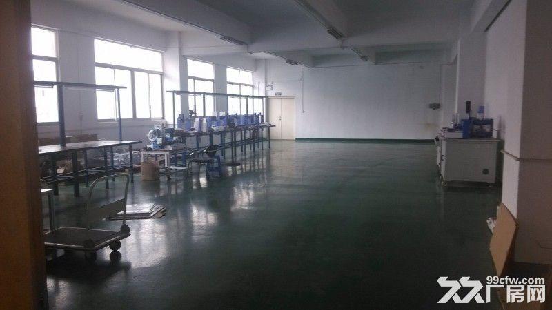 绝世独院龙华厂房8000㎡,空地4000㎡-图(3)