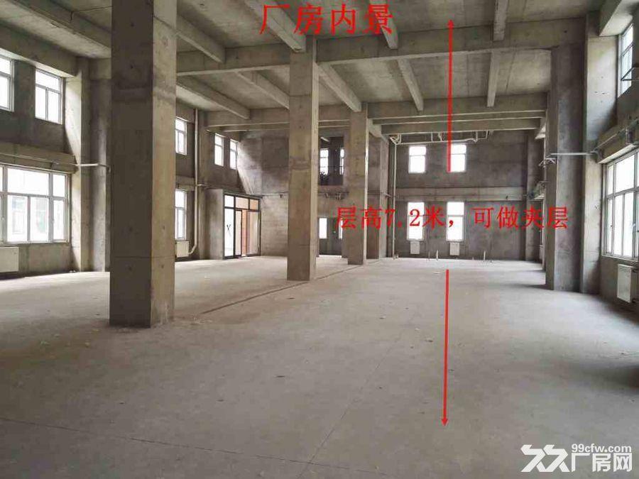 【企业之家】天津医疗器械产业园欢迎您!大产权厂房-图(3)