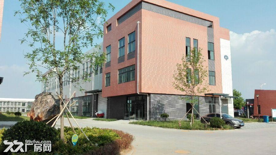 正规园区成品厂房3000−4000平出售可贷款-图(2)