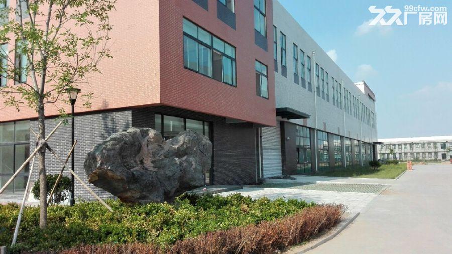 正规园区成品厂房3000−4000平出售可贷款-图(5)