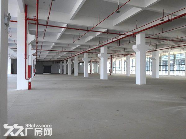 安徽省宣城市经济开发区厂房出租-图(3)