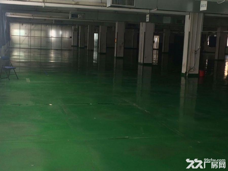 《花园式实景图》清平高速观澜出口独栋厂房4000平-图(1)