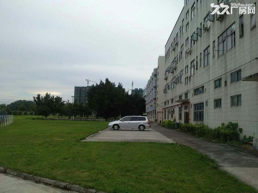 《花园式实景图》清平高速观澜出口独栋厂房4000平-图(4)