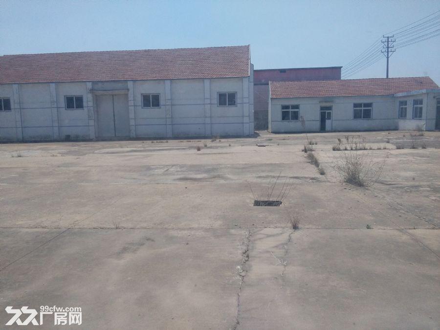 胶州马店厂房8000㎡白菜价出租可分租临机场高速-图(5)