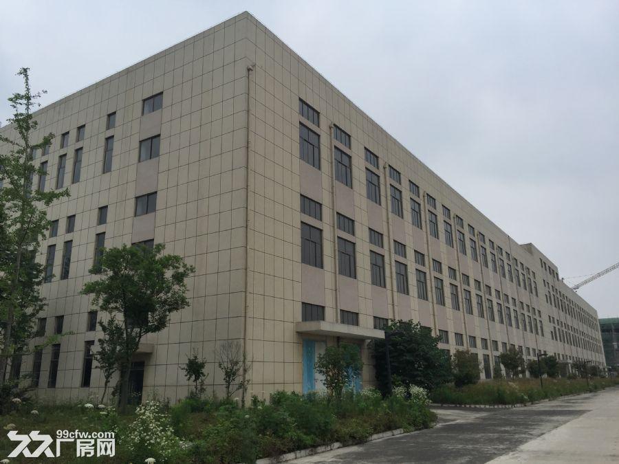 标准厂房、宿舍楼招租-图(2)