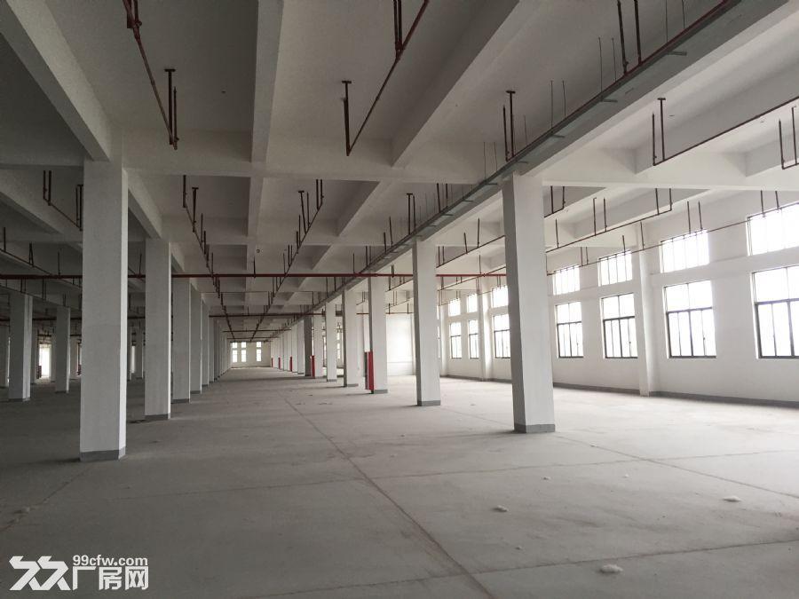标准厂房、宿舍楼招租-图(3)