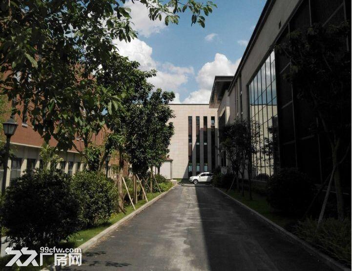双福新区独栋厂房租售1300、1600、1800、2600-图(2)