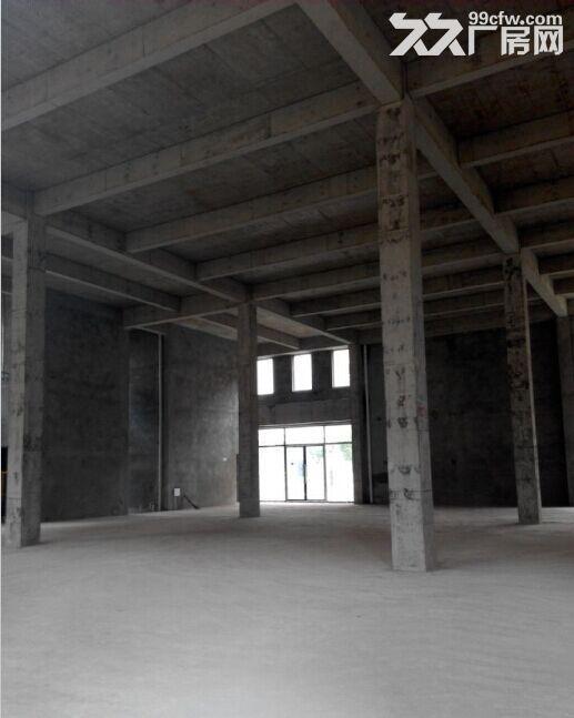 双福新区独栋厂房租售1300、1600、1800、2600-图(5)