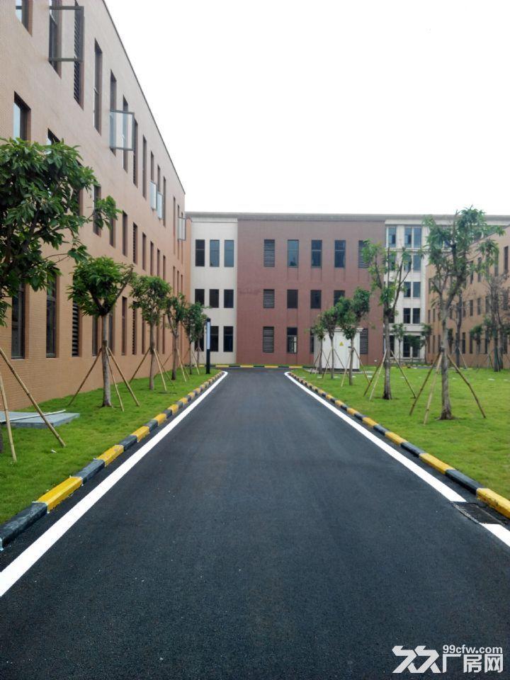 双福新区独栋厂房租售1300、1600、1800、2600-图(6)