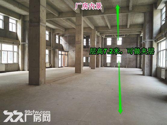 【2000平独栋带院】园区厂房花园式大产权可贷款-图(3)