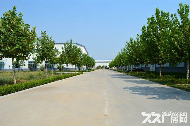 齐河闲置工业用地20亩寻求合作-图(1)