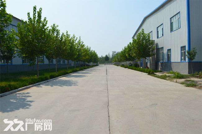 齐河闲置工业用地20亩寻求合作-图(2)
