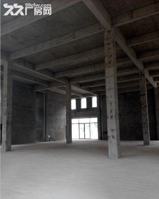 独栋标准厂房租售面积1300−3000平!价格面议!配送电!-图(6)
