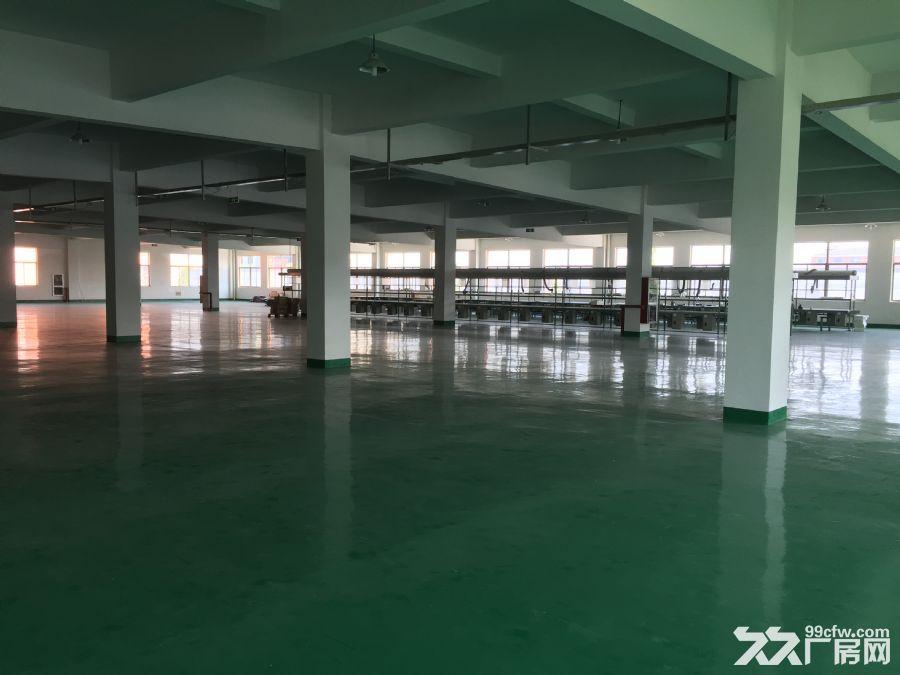 标准厂房出租全新装修全新配套-图(4)