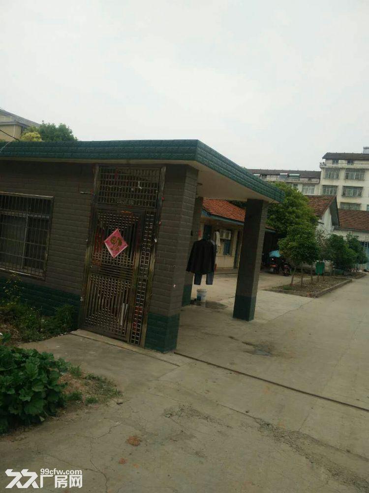 西洞庭12亩占地及厂房整体出售-图(1)
