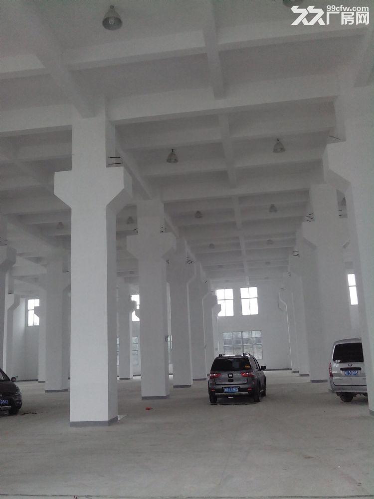 标准厂房1楼出租4000平米-图(1)
