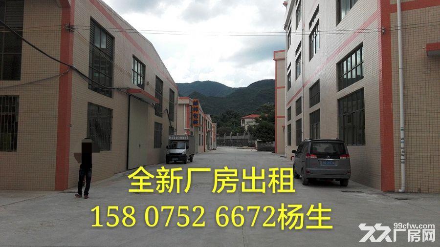 全新单层厂房3000平米出租-图(1)
