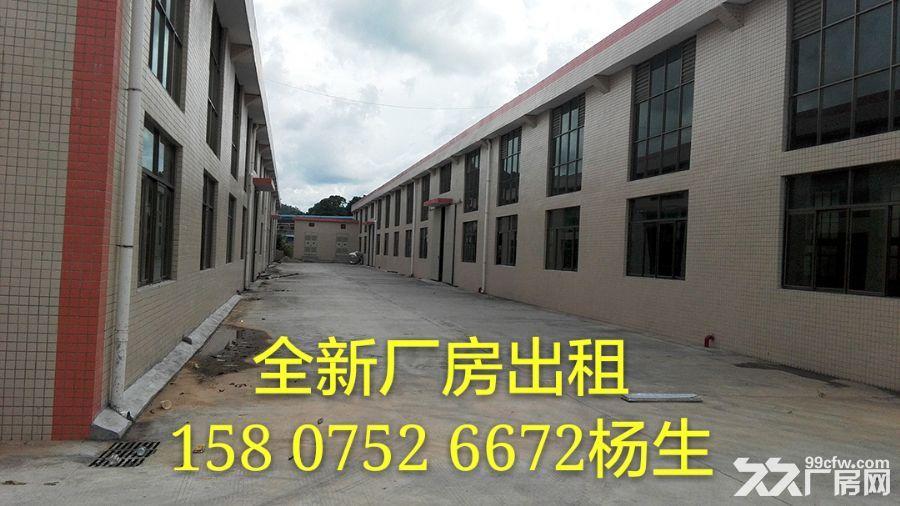 全新单层厂房3000平米出租-图(2)