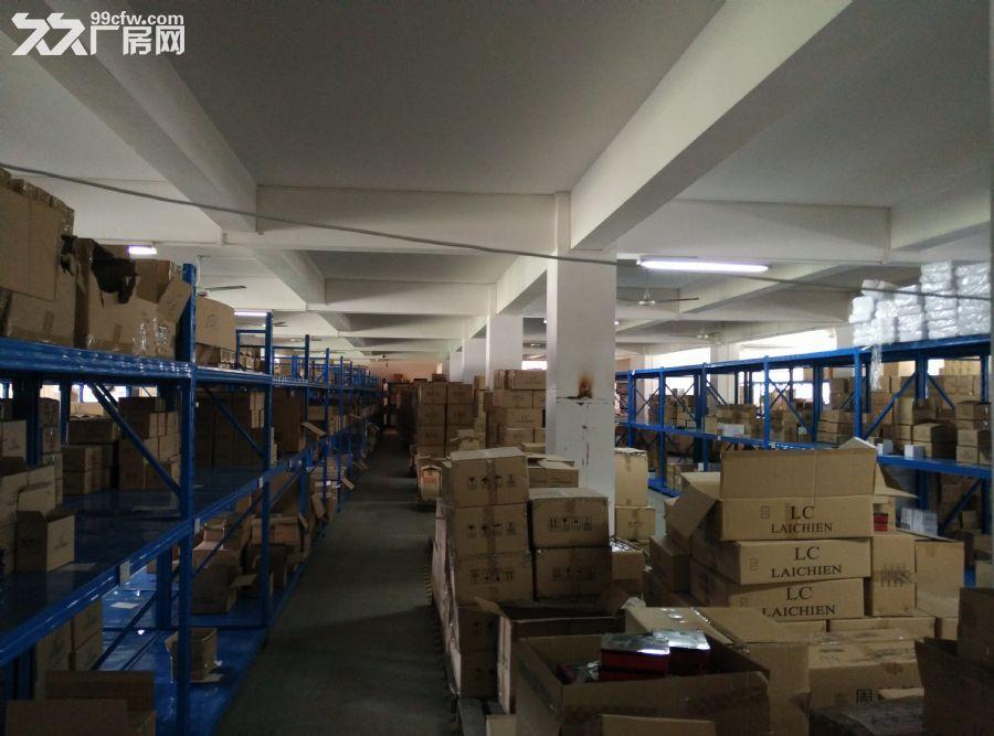 科学城1200㎡厂房仓库招租-图(3)