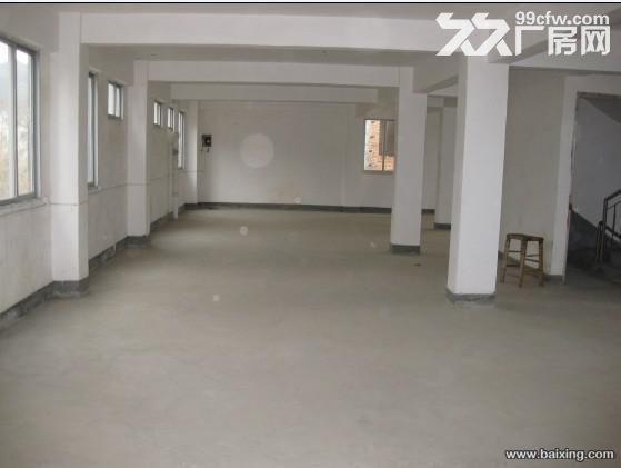 桂山厂房出租,价格面议-图(2)