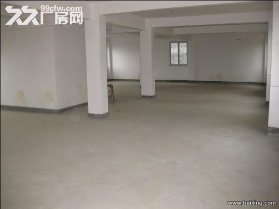 桂山厂房出租,价格面议-图(4)