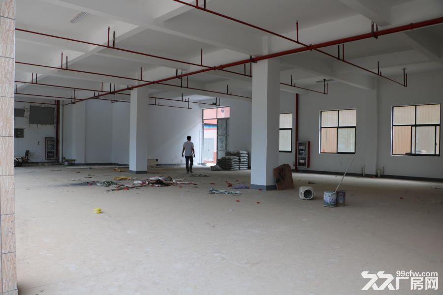 新建厂房出租,位置佳。-图(4)