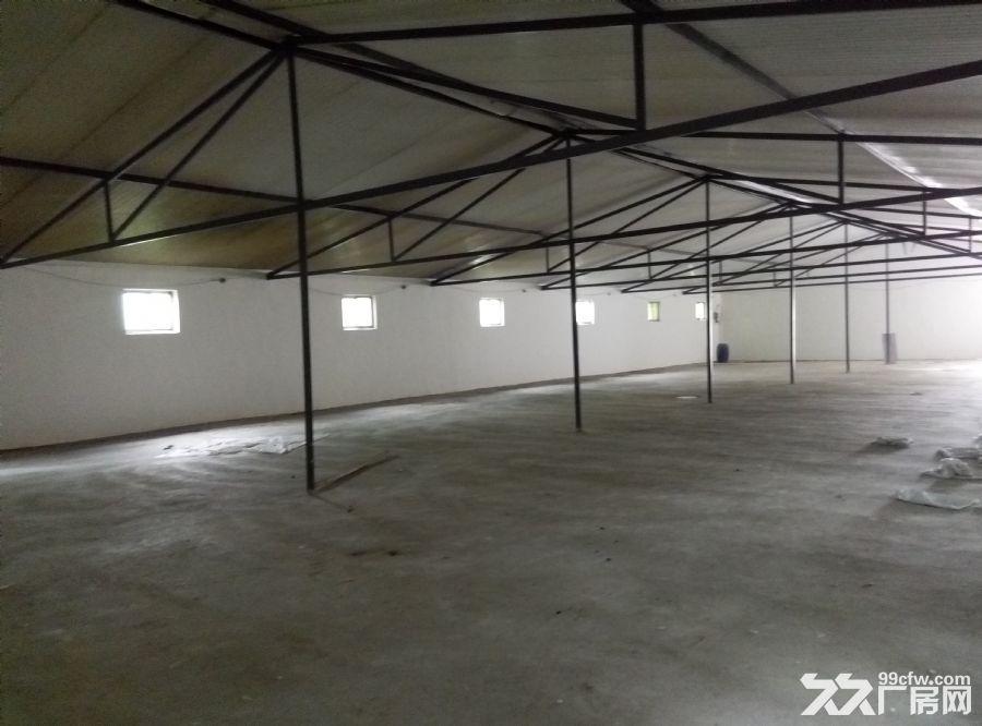 800平方新建厂房出租-图(4)