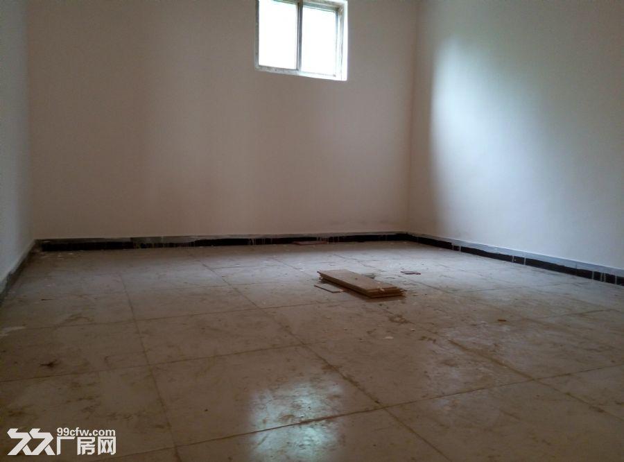 800平方新建厂房出租-图(5)