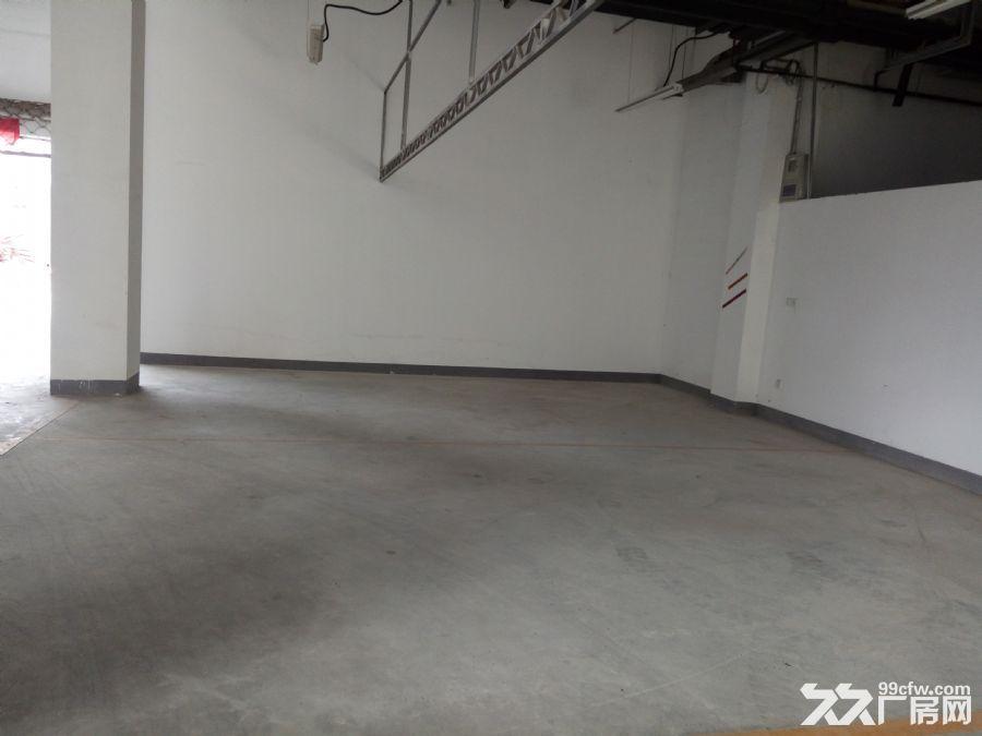 自己园区的仓库,27方起租,16块一个月,不要中介费的-图(1)