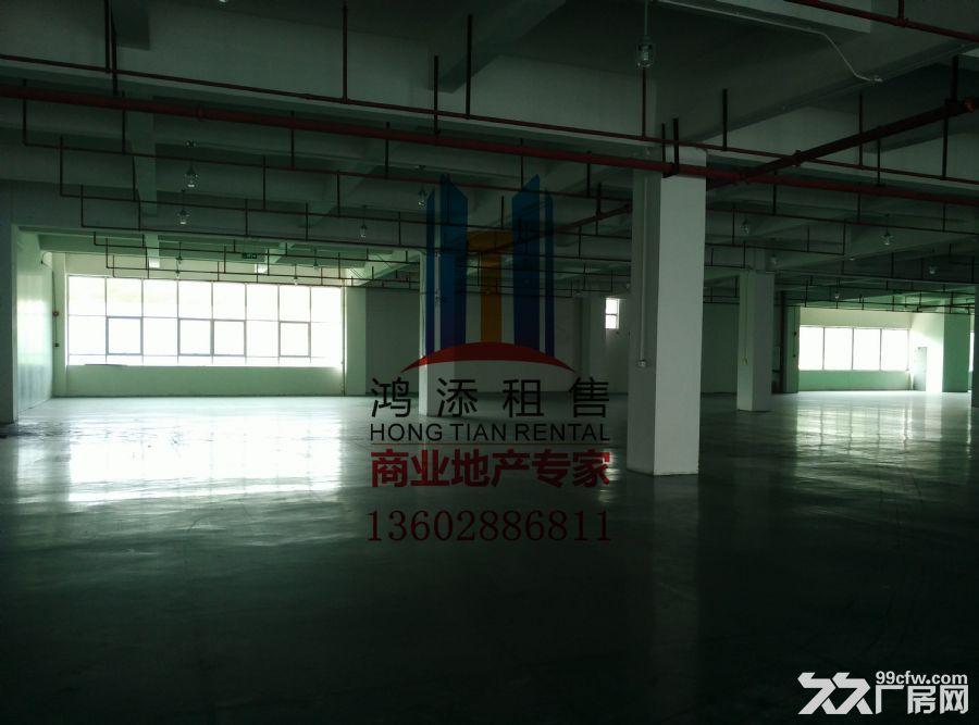 科学城2600㎡厂房招租稀缺房源-图(1)