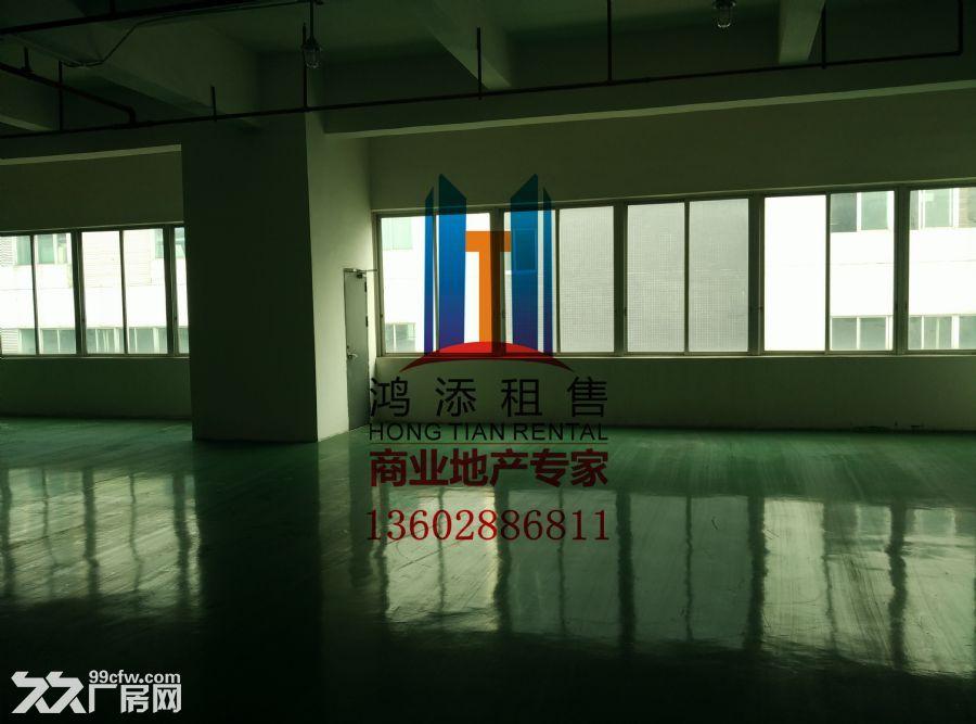 科学城2600㎡厂房招租稀缺房源-图(4)