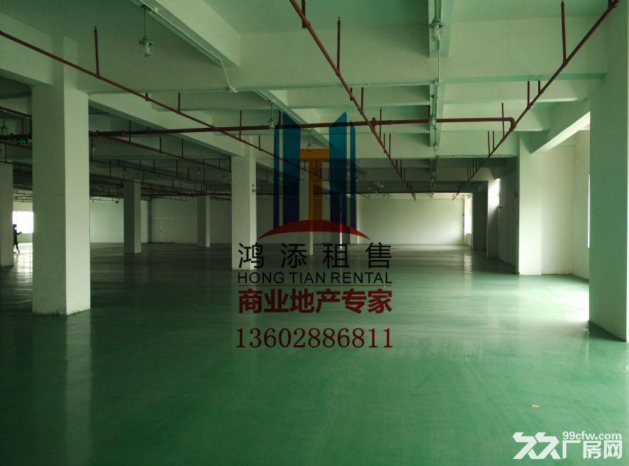 科学城2600㎡厂房招租稀缺房源-图(5)