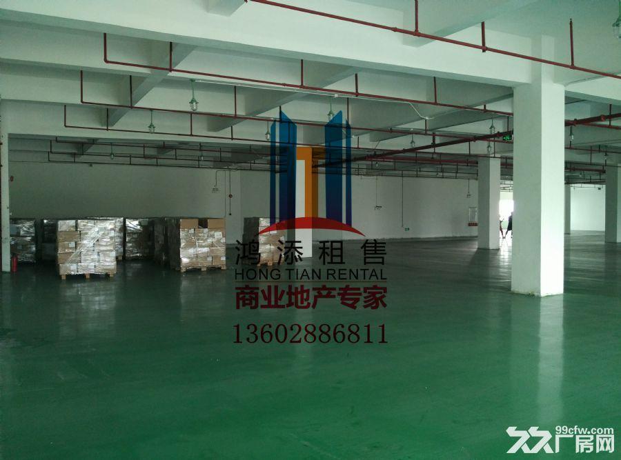 科学城2600㎡厂房招租稀缺房源-图(6)