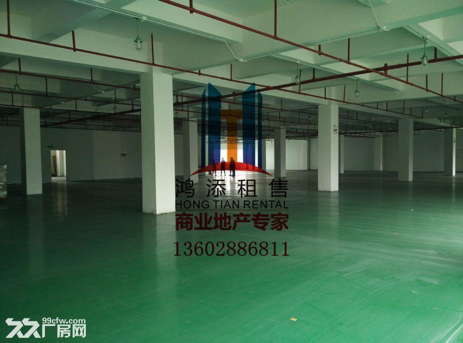 科学城2600㎡厂房招租稀缺房源-图(7)