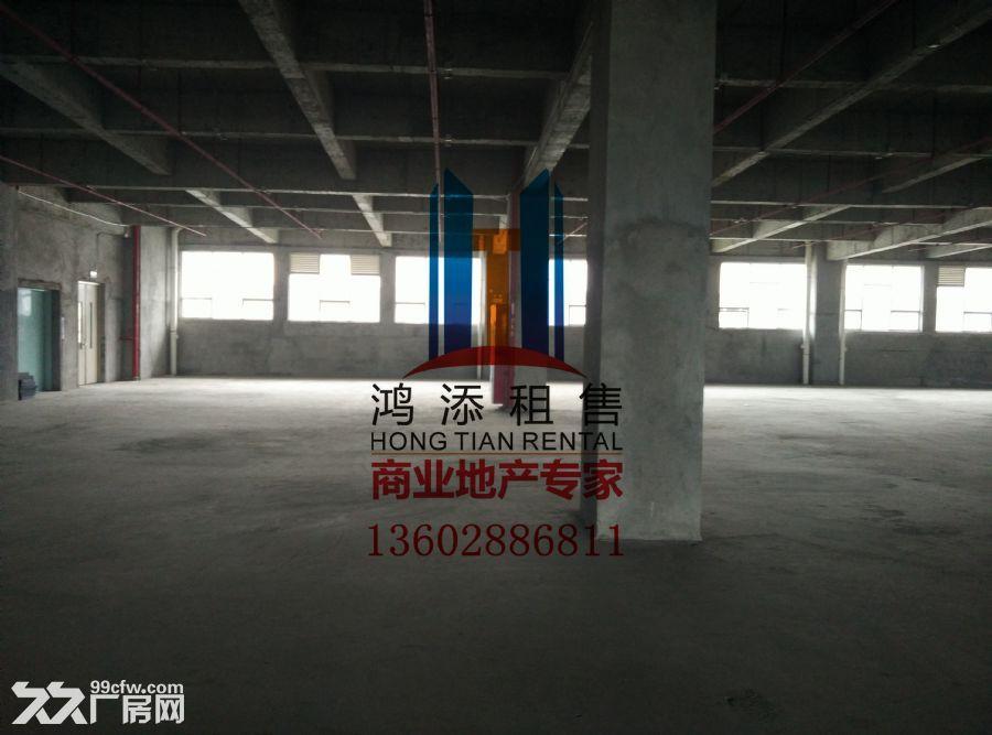 科学城33000㎡高标准厂房急售-图(4)
