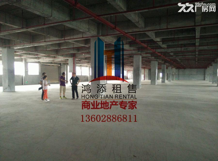 科学城33000㎡高标准厂房急售-图(5)