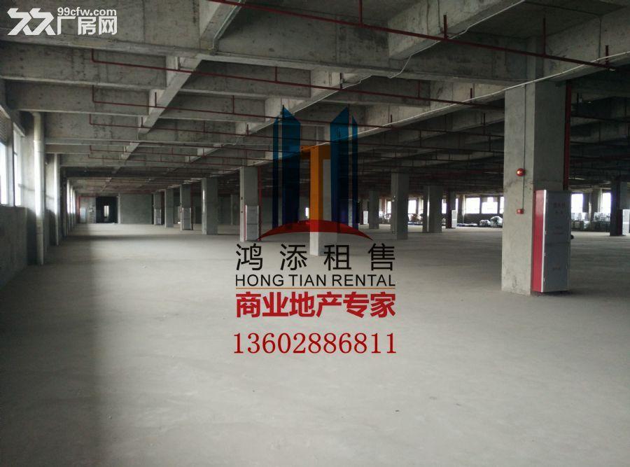科学城33000㎡高标准厂房急售-图(6)